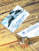 fleshka-kreditka-s-naneseniem-logotipa-kupit-v-ekaterinburge-1-scaled