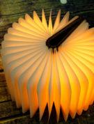 Kniga-svetilnik-v-derevyannoj-oblozhke-s-diodnoj-podsvetkoj-optom-nedorogo-7